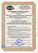 """Сертификат подтверждает, что система экологического менеджмента КЗ """"Авангард"""" соответсвует международному стандарту"""